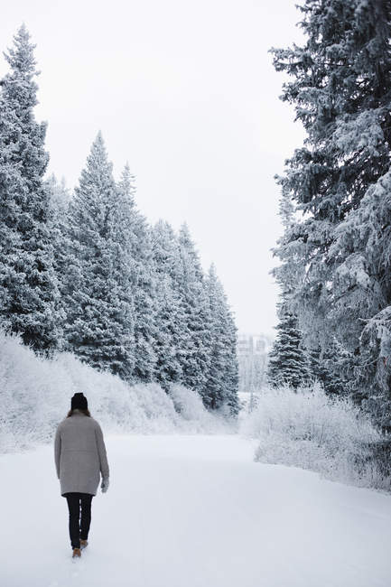 Woman walking in snow through forest. — Stock Photo