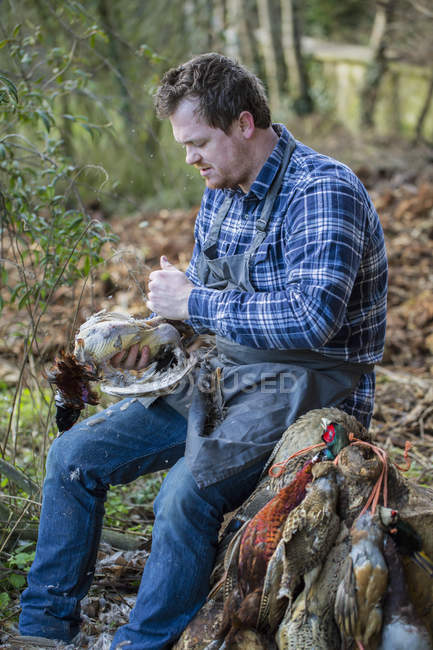 Man plucking feathers from bird — Stock Photo