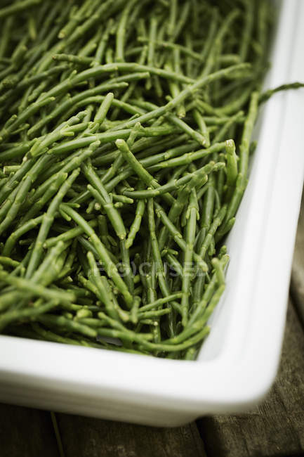 View of a tray of samphire. — Stock Photo