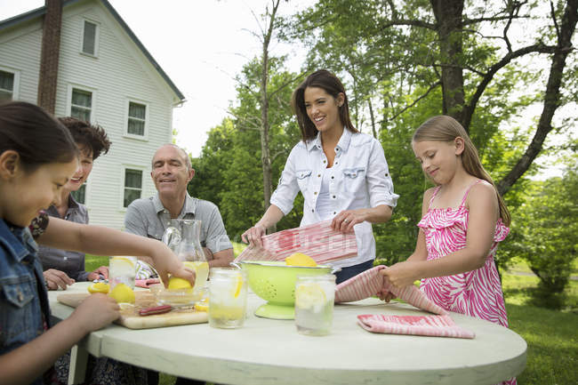 Summer family gathering at a farm. — Stockfoto