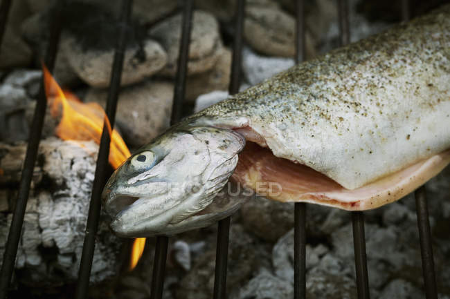 Grilled fish on a barbecue. — Stock Photo