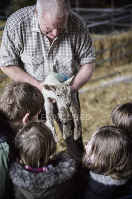 Farmer and children with newborn lamb — Stock Photo