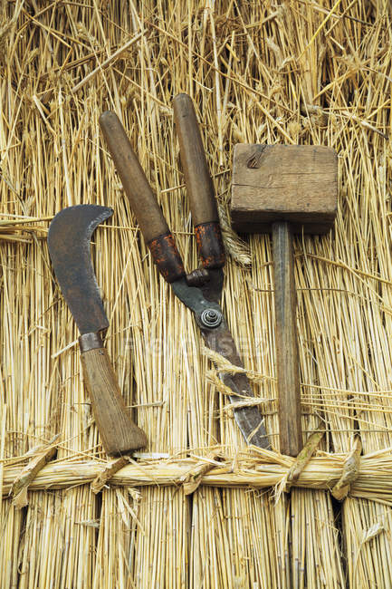 Wooden mallet, shears and bill hook — Stock Photo