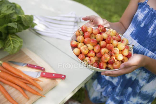 Criança carregando uma tigela de cerejas frescas colhidas — Fotografia de Stock