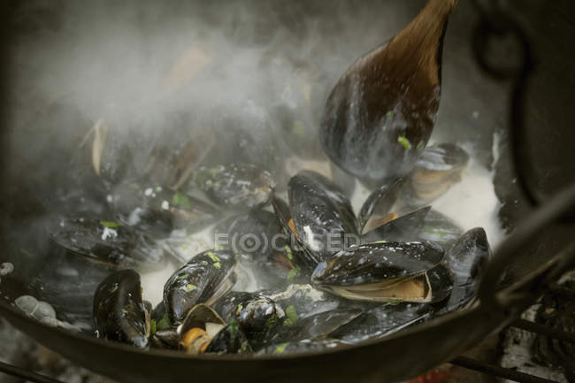 Black Mussels over a barbecue. — Stock Photo