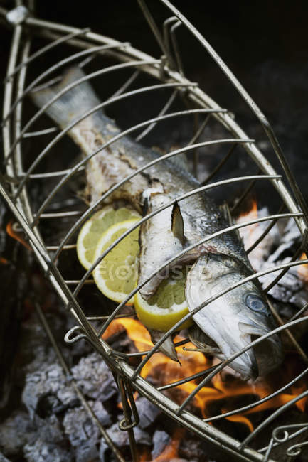 Fish in a fish grill basket — Stock Photo