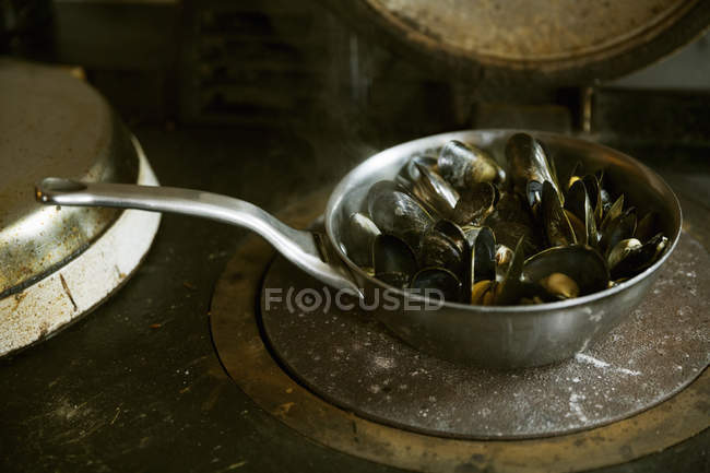 Pan of Black Mussels. — Stock Photo