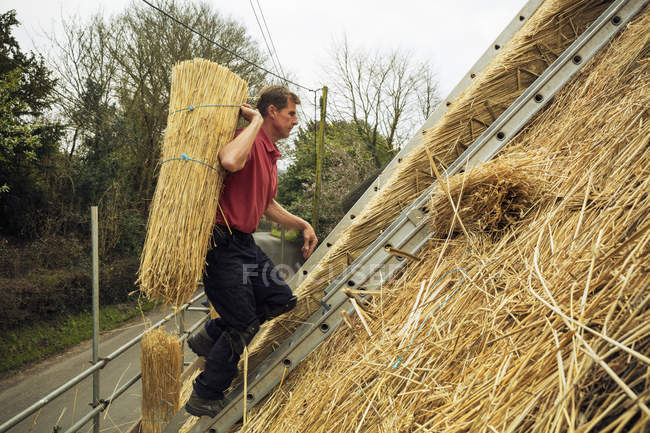 Thatcher carrying a yelm of straw — Stock Photo