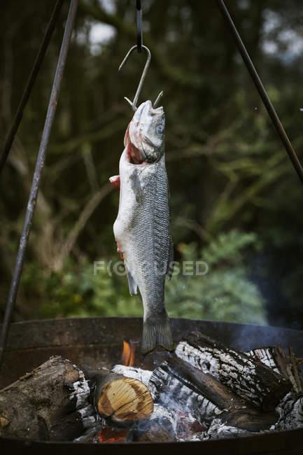 Poisson grillé sur un barbecue . — Photo de stock