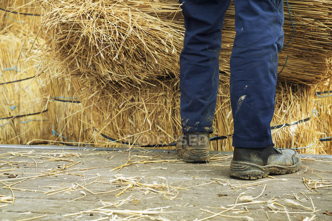 Thatcher standing beside bundles of straw — Stock Photo