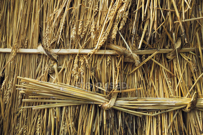 Close up of straw laid on roof — Stock Photo