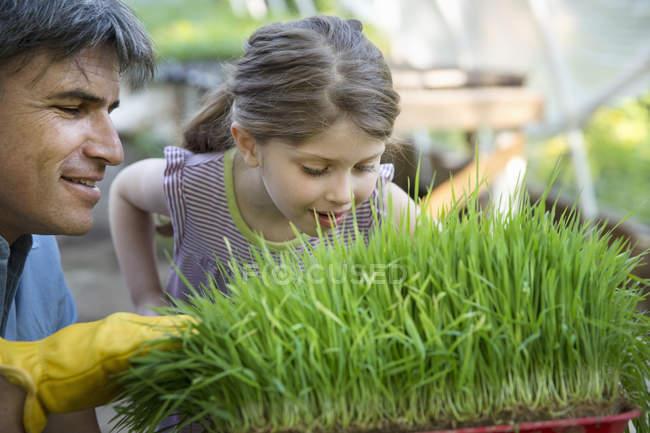 Man and girl leaning over plants — Stock Photo