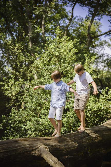 Jungen zu Fuß entlang log — Stockfoto