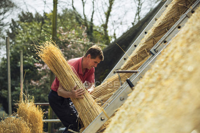 Thatcher carrying yelm of straw — Stock Photo