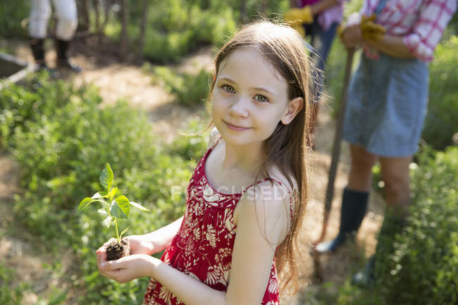 Girl holding plant with green foliage — Stock Photo