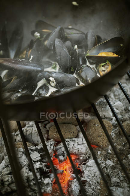 Pan of Black Mussels — Stock Photo