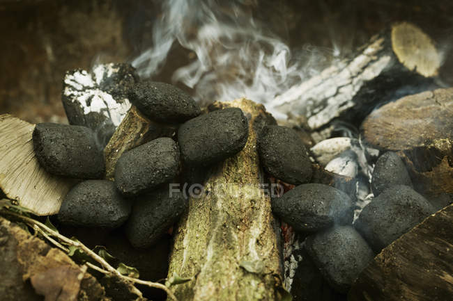 Close up of charcoals in fireplace — Stock Photo