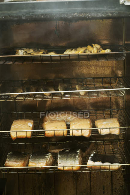 Filetes de pescado en estantes - foto de stock