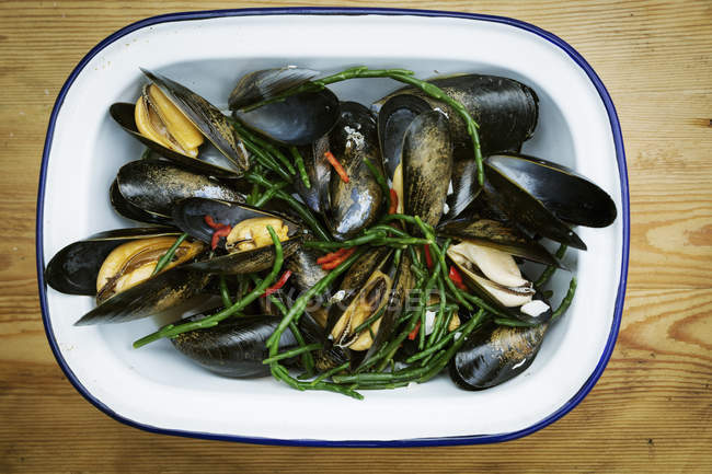 Steamed Black Mussels — Stock Photo
