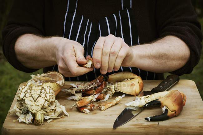 Chef preparando um caranguejo . — Fotografia de Stock