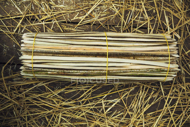 Bundle of wooden pegs — Stock Photo