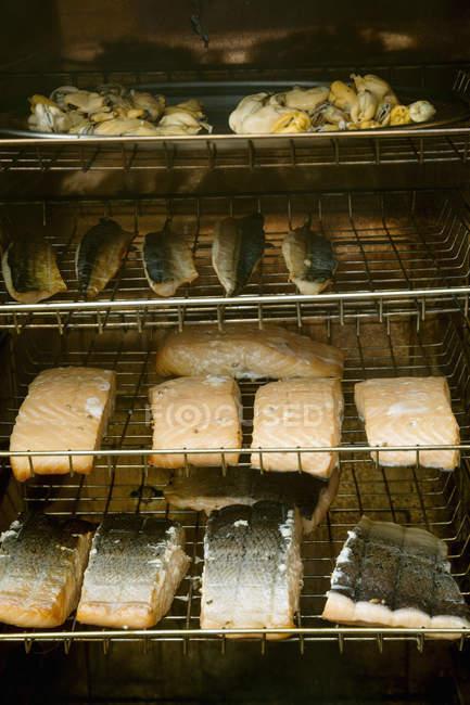 Filetes de pescado en el ahumador. - foto de stock
