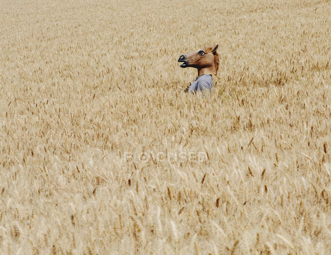 Person wearing horse mask — Stock Photo