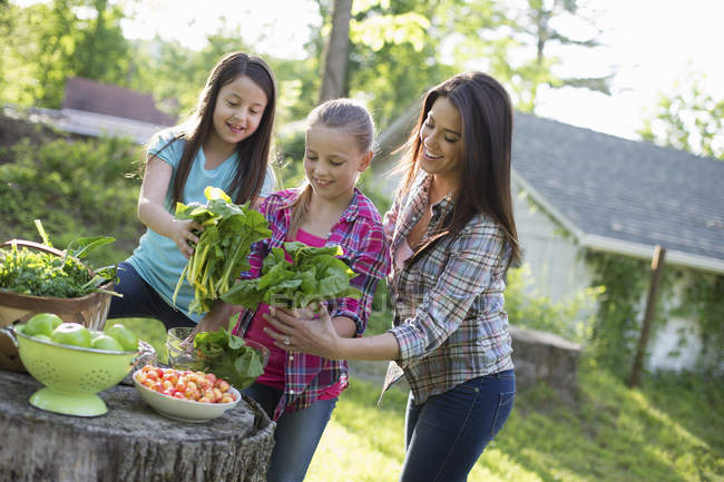 People on organic farm in the countryside — Stock Photo