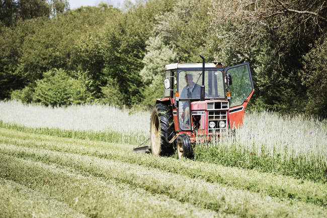 Tractor cutting a swathe in a field. — Stock Photo