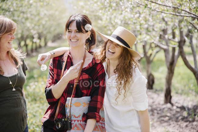 Жінки, що тримає кульбаби — стокове фото