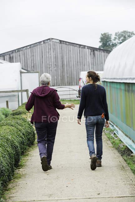 Люди в дитячій кімнаті органічних завод — стокове фото