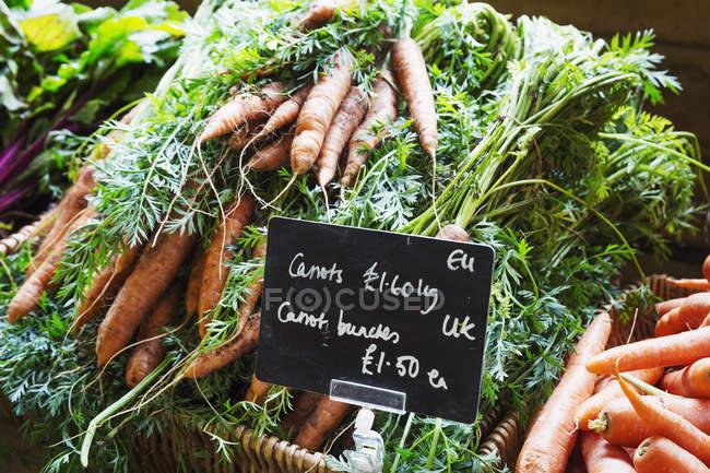 Mucchio di carote biologiche — Foto stock