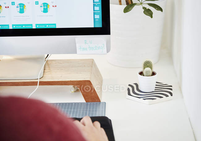 Computer screen and cactus plant. — Stock Photo