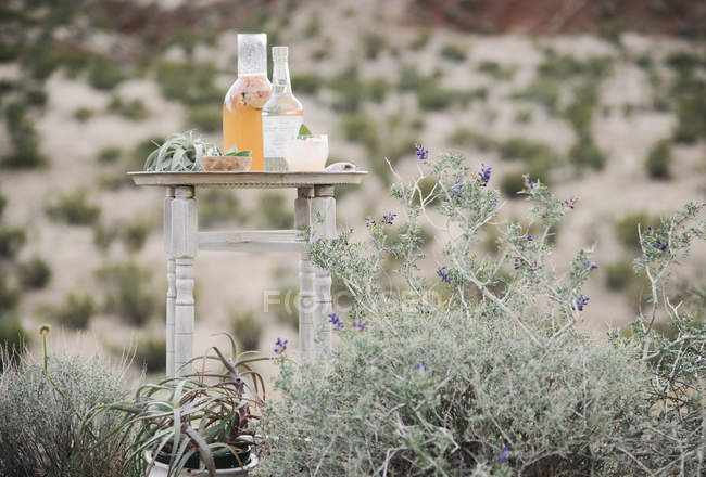 Glass bottle and in a desert landscape — Stock Photo