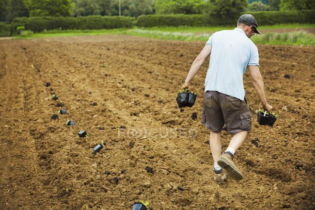 Uomo campo portando vasi di piante — Foto stock