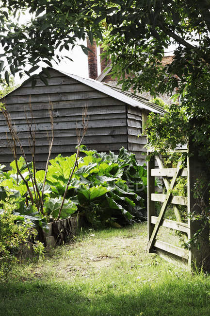 Barn in a mature garden — Stock Photo