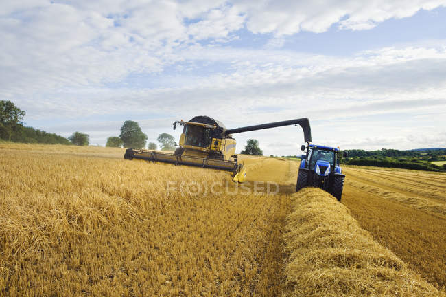 Combine harvester working alongside tractor — Stock Photo