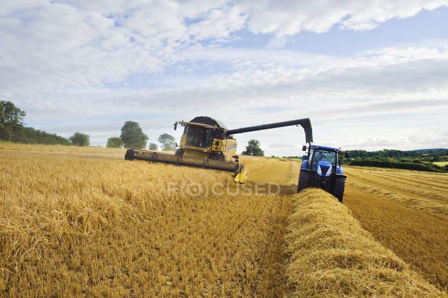 Moissonneuse batteuse travaillant aux côtés de tracteur — Photo de stock