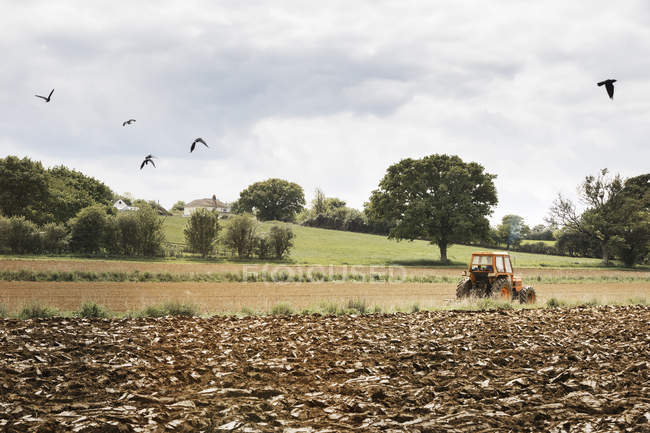 Ploughed field, and a tractor on the move. — Photo de stock