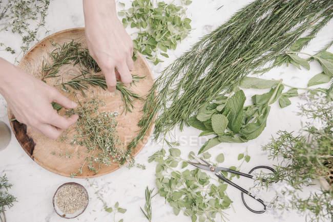 Frau, vorbereiten, Kräuter und Pflanzen — Stockfoto