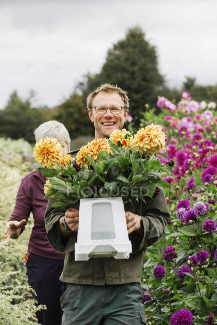 People working in an organic flower nursery — Stock Photo