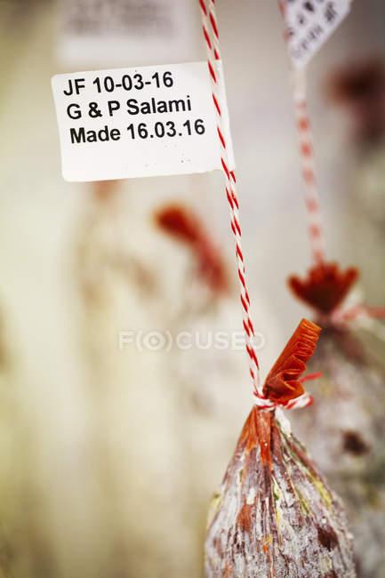 Puerto y Salamis de ajo - foto de stock