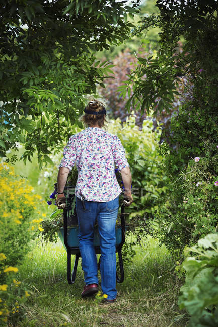 Woman pushing wheelbarrow of garden — Stock Photo