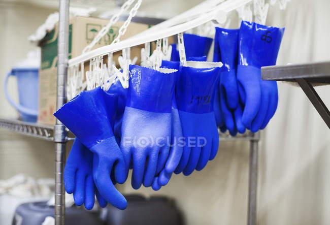 Рядок сині рукавички, пластикові — стокове фото