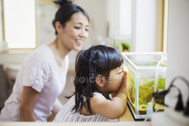 Woman and a child looking at the fish — Stock Photo
