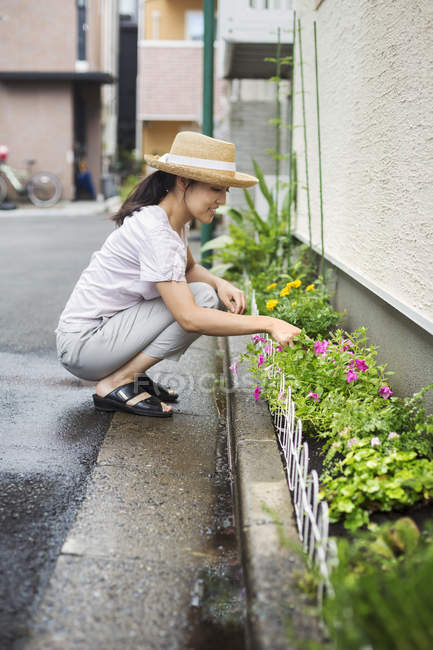 Mulher agachada e plantando flores — Fotografia de Stock
