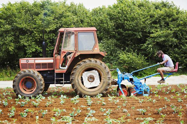 Men driving tractor — Stock Photo