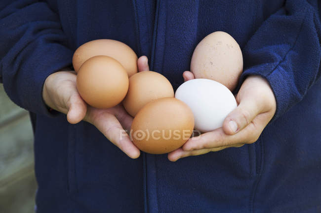 Person holding eggs. — Stock Photo