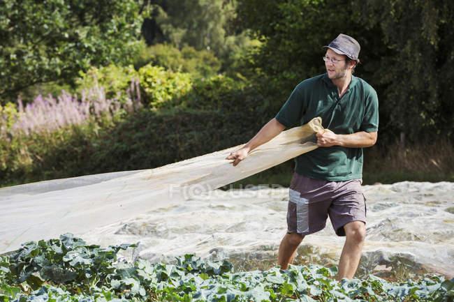Человек тянет лист хрустального меха — стоковое фото