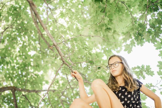 Jeune fille assise sur un arbre haut — Photo de stock